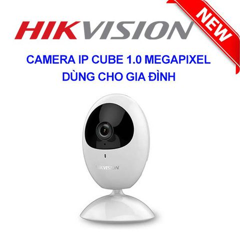 Camera IP WIFI Hikvision DS-2CV2U01EFD-IW